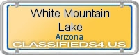 White Mountain Lake board